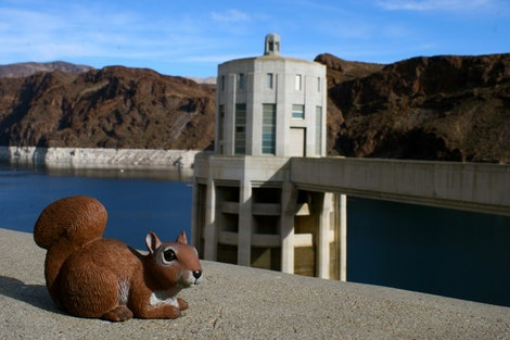 Rice at Hoover Dam