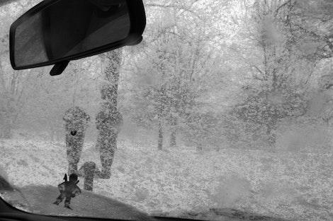 Snowshield #2