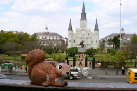 Rice in 'Nawlins