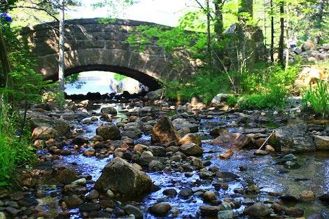 Acadia National Bridge