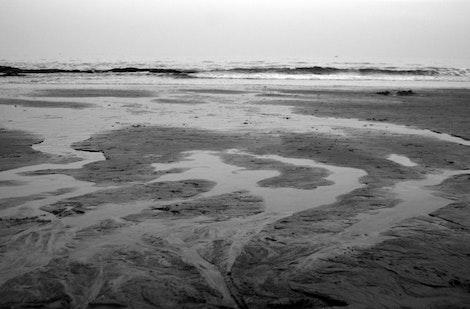 Tide by Low Tide