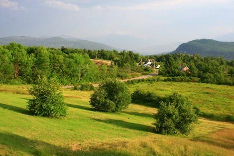 Mountain House Yard