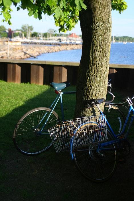 Bikes of Burlington
