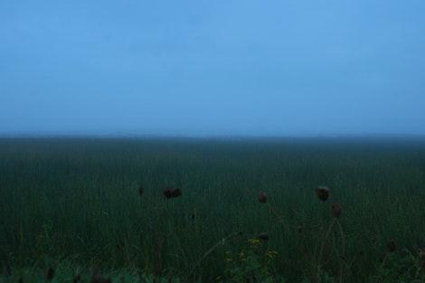 Keweenaw Bay Shore of Fog