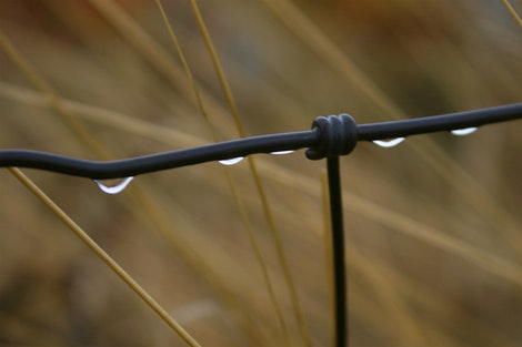 Montana Rain Stop Fence