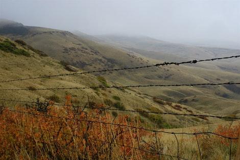Montana Rain Stop