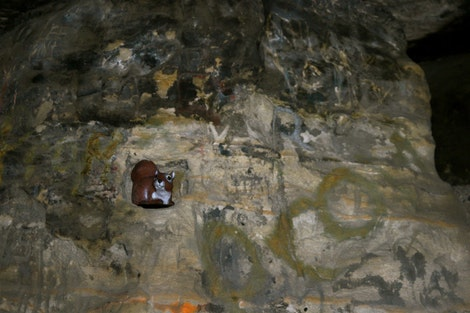 Rice in the caves