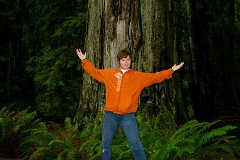 Redwood Fun #1